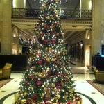 Holiday tree in main lobby. November 2013