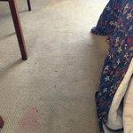 More dirty carpet...