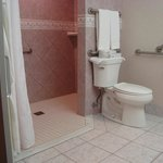 Real Handicapped bathroom