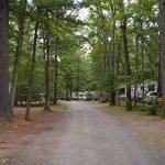 Foto de Pineland Camping Park