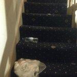 mas basura en la escalera