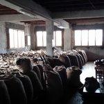 nutmeg factory