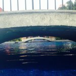 Swimming under pool bridges