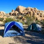 Our campsite, #77