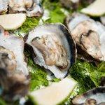 Bilde fra Sails Beach Bar & Restaurant