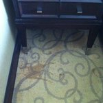 Grand Deluxe room - dirty carpet with patches
