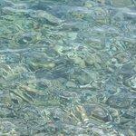 Вода - необыкновенного цвета, чистейшая