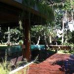 vue piscine du jardin