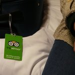 tripadvisor tag will travel