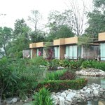 Bungalows from garden