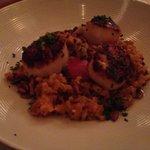 Scallops over risotto