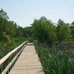 Walkway to Recreation Lake