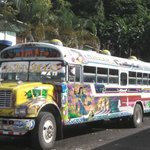 Buses in Portobelo seen on after tour to the ruins