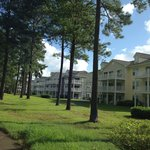 View of condos from the golf course/cart path