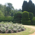 Lovely and varied gardens