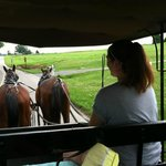 Amish history lesson and a buggy-ride all in one!