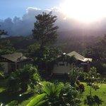 vue de la terrasse du lodge sur Tenorio
