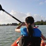Kayak rentals to mangroves around the hotel