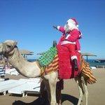 Mikołaj wprost na plażę wjechał wielbłądem :)