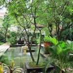 Outdoors gardens/ pools