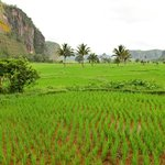 West Sumatra
