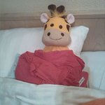 Meet Gill the Giraffe,essentail for our cold room (hot water bottle)