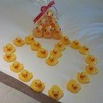 酒店安排的小鴨專案,讓孩子們都很開心!