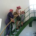Climbing to the top is easy for older folk and kids