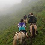 Parrot Hill Horseback Riding