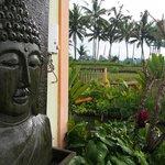 Bali Suksma Villa Foto