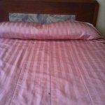 Bedspread needs replacement.