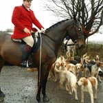 Master of the hunt,new years day.@The Castell-y-Bwch