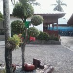 Garden and rooms/huts