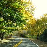 Picturesque Route 6A