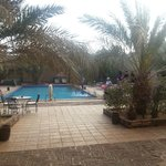 La piscine Au fond à droite le Bar...