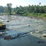 река с веранды