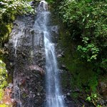 waterfall on jungle trek