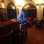 Hamansi Christmas Tree