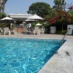 Heerlijk zwembad