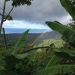 a rainbow over the jungle and ocean view