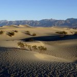 Mesquite Sand Dunes, Death Valley National Park, California