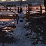 Elder Snowman