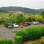 View of parking lot and vineyards beyond