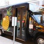 pineapple shuttle (free)