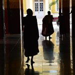 monks at a local buddhist temple...