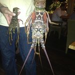 yep Anguilla lobster on the left and main lobster on the right