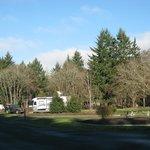 ภาพถ่ายของ Armitage Park Campground