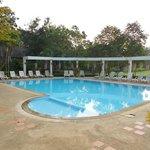 la piscine, dans la nature