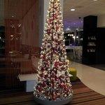 Christmas decor in Reception