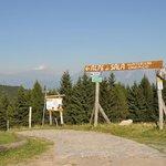 Het bergweggetje dat naar Alpe di Sala leidt